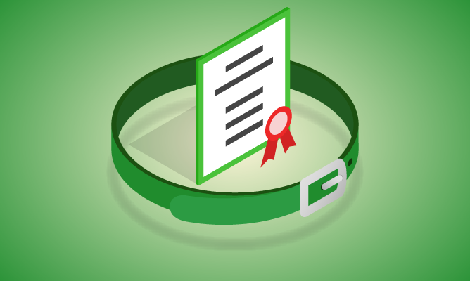 Recertification Exam - Six Sigma Green Belt course icon