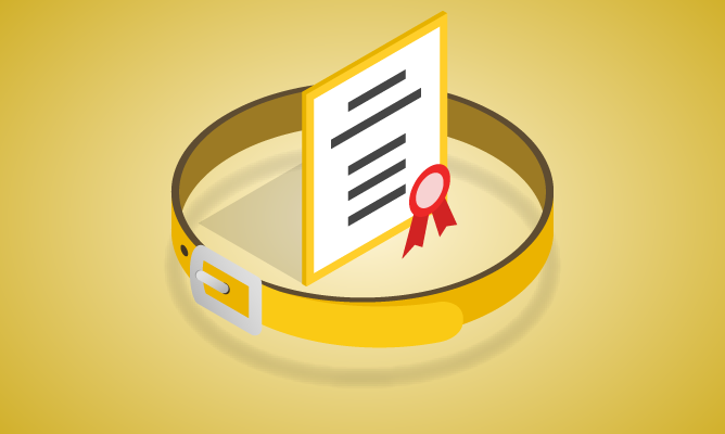 Recertification Exam - Six Sigma Yellow Belt Course Icon
