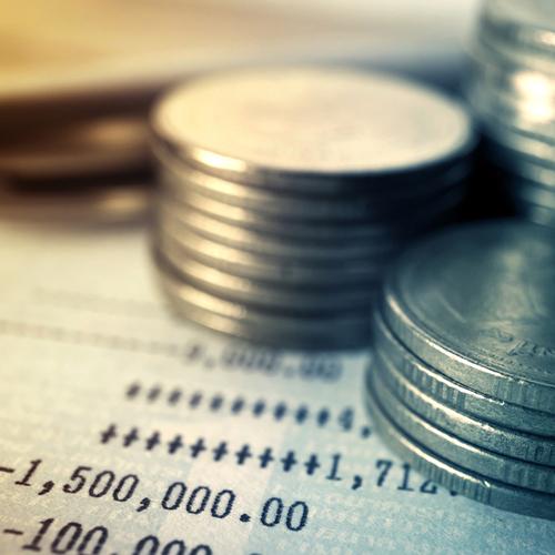 Budgeting in a Nonprofit Organization
