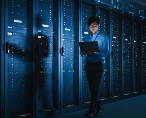 Cybersecurity & CISSP® icon